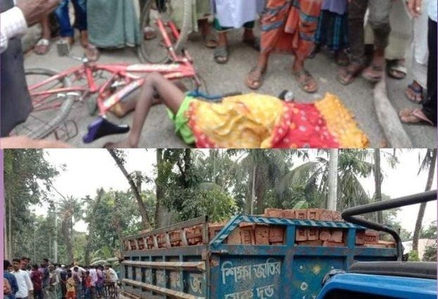 মোল্লাহাটে বেপরোয়া চালিত ইটবোঝাই ট্রলি/ট্রাকের চাপায় বাইসাকেল আরোহী নিহত